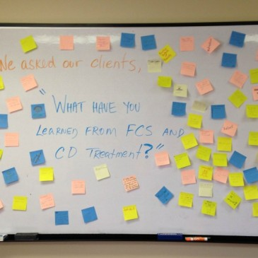 We Asked Our Clients…